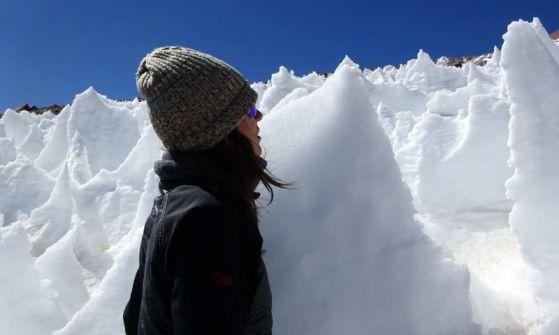 Снежни водорасли обитават ледени шипове на над 4 000 м височина